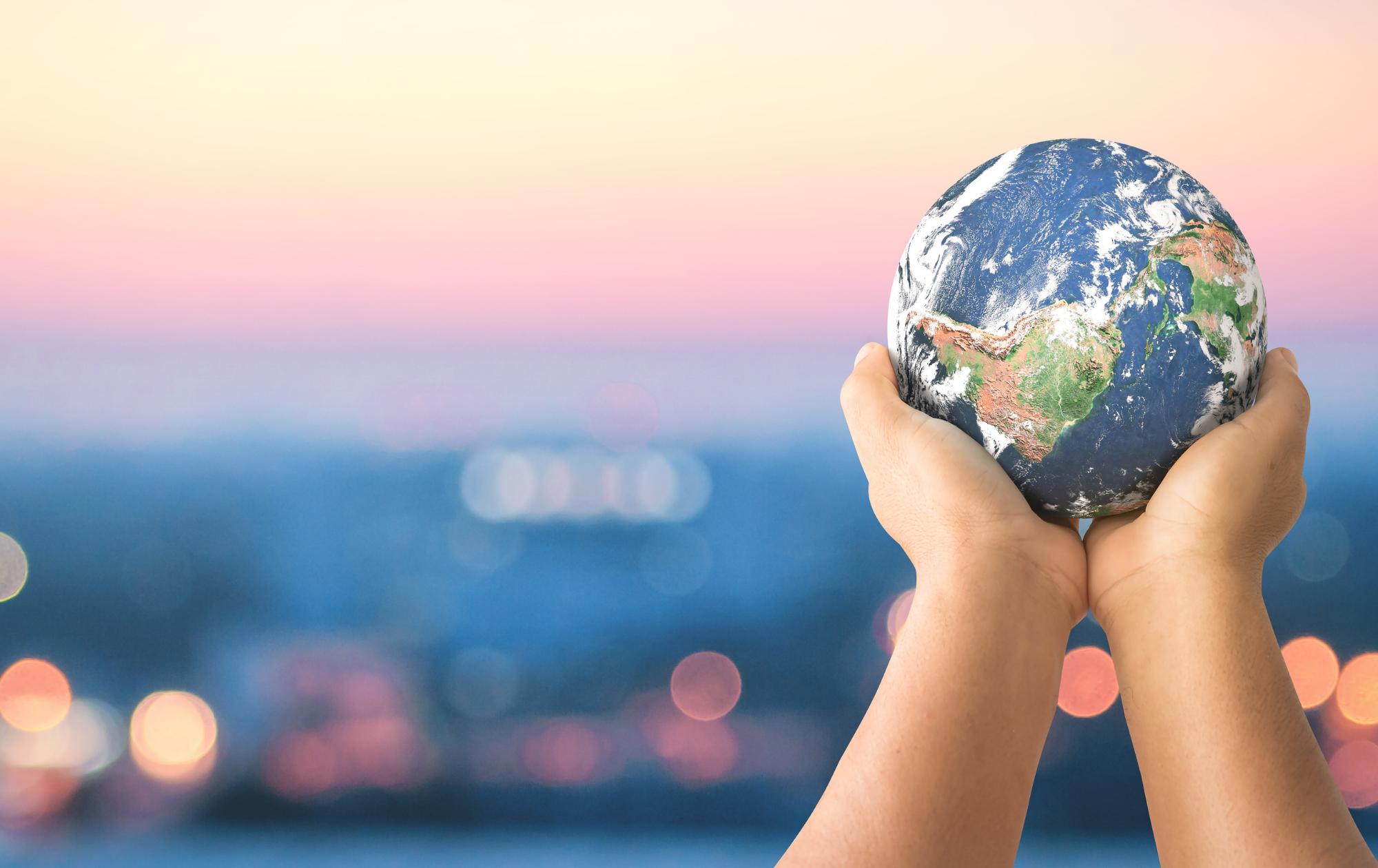 Con cada proyecto ayudamos a reforestar el planeta